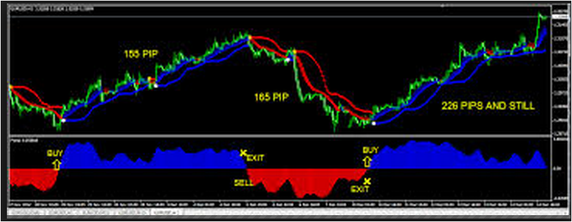Forex no loss indicator