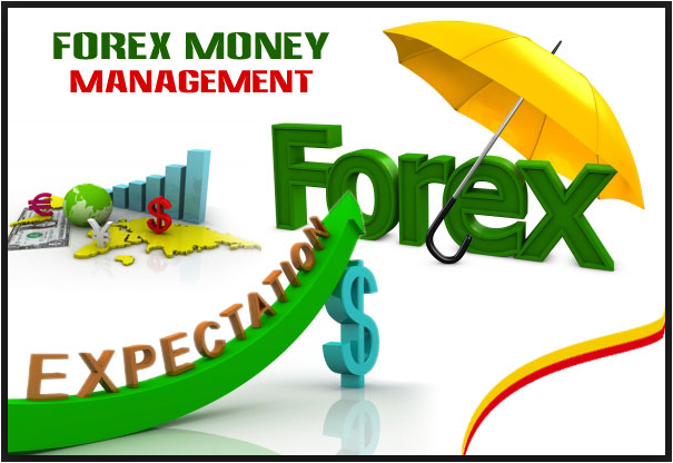Forex money manager jobs